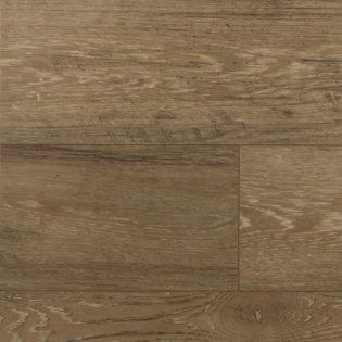 Beaver oak – 54474190