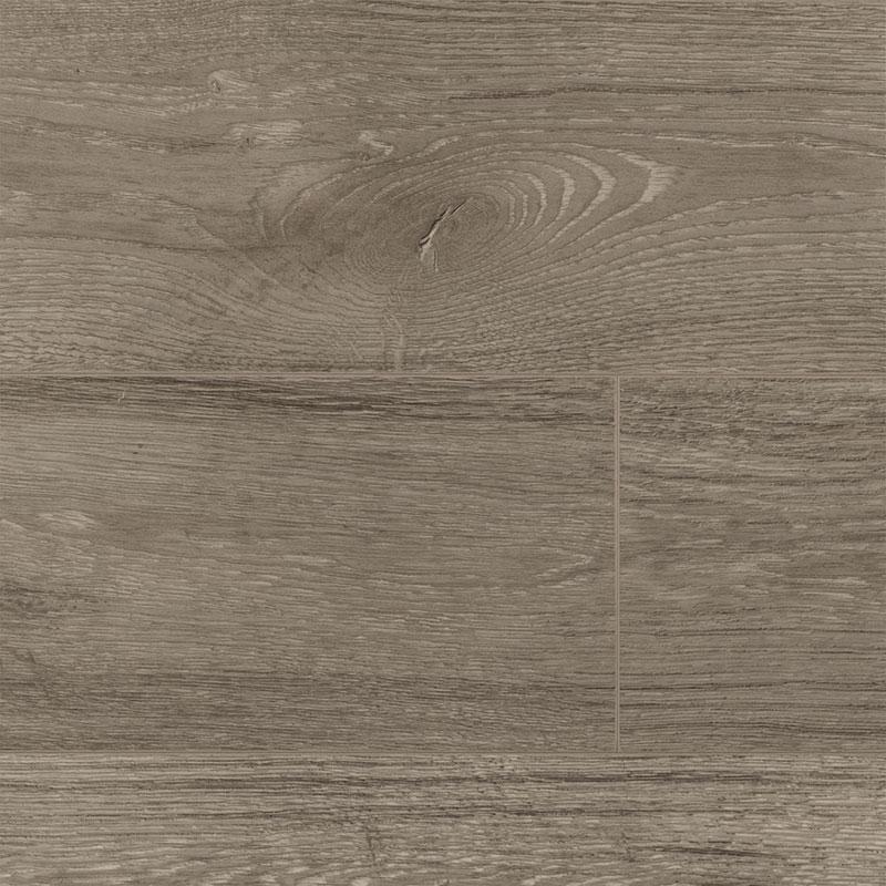 Ecru oak – 54474192