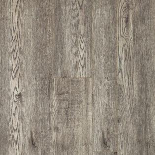 Mojave oak – 8048