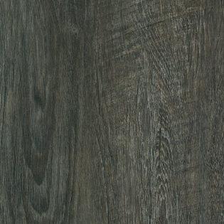 Sonora Oak