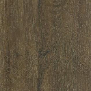 Sierra oak – 8064