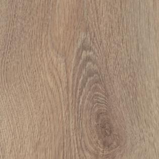 Cerus oak – 8252
