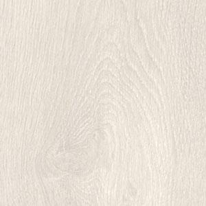 Mont-Blanc oak – 8630