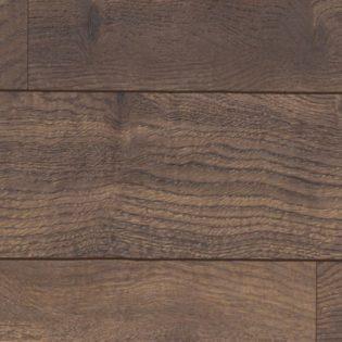 Yamaska oak – 54480170
